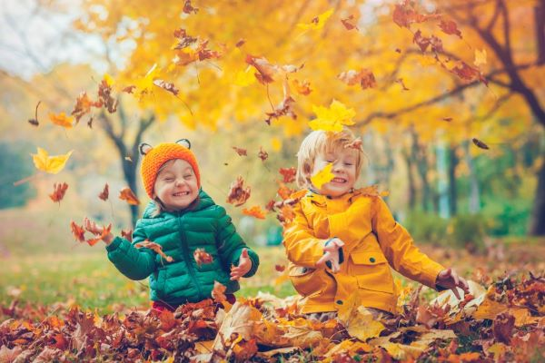 Fun Activities for Fall